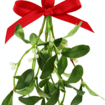 mistletoe holiday stress bruxism